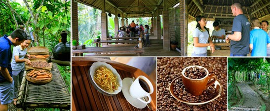 coffee break in Bali, drink coffee in Kintamani, coffee plantation, kopi luwak, drink coffee in ubud, kori ubud, relax in Bali, holiday in Bali,