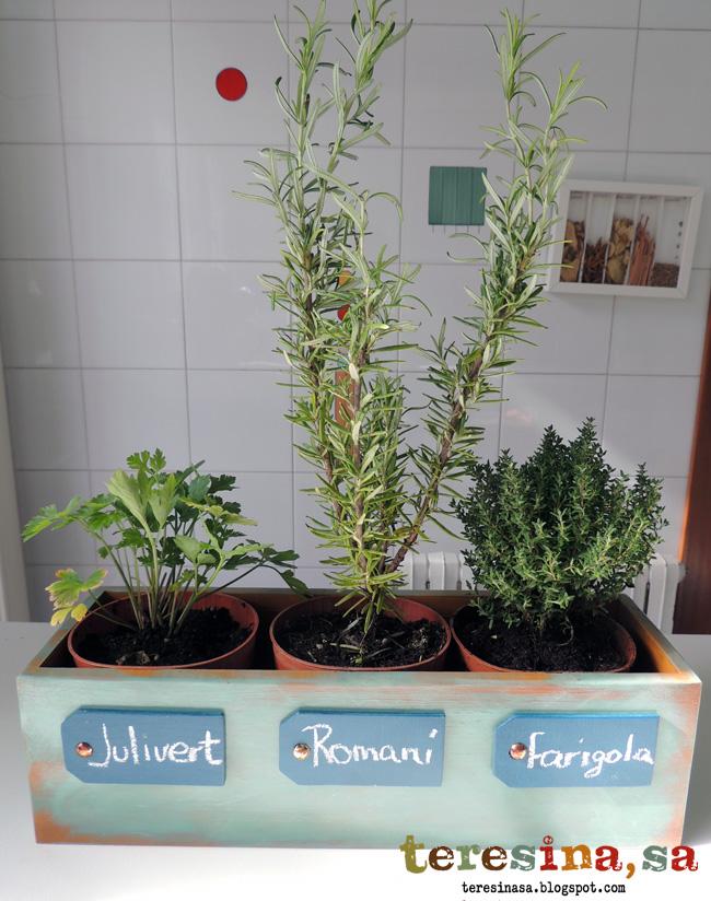 7 ideas para decorar tus macetas manualidades for Plantas aromaticas para cocinar