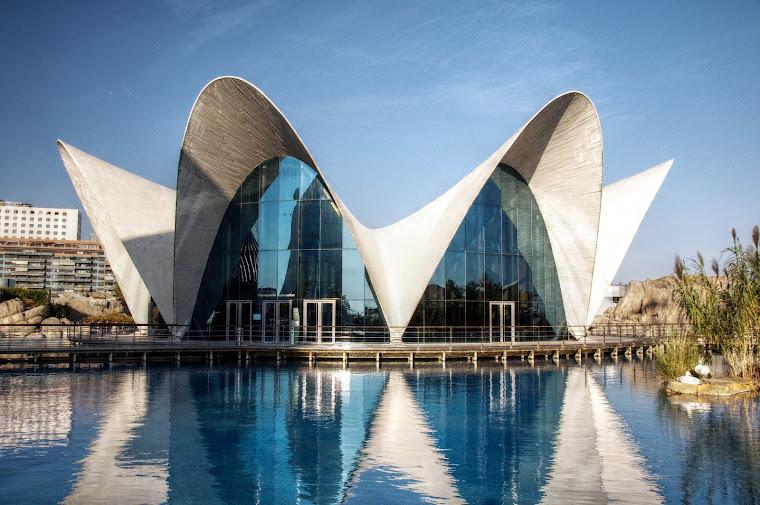 L'Oceanografic (El Oceanográfico) en Valencia, España.
