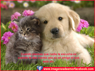 amistad bonitas