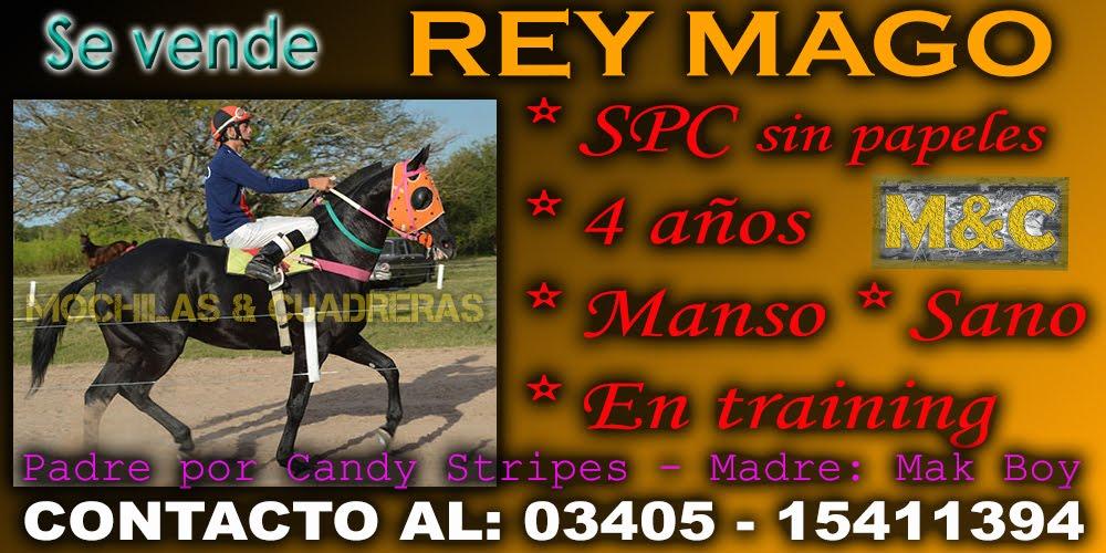 REY MAGO - 18-06-15