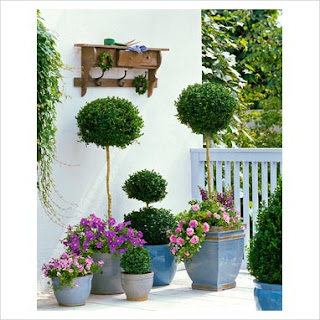 Azul vital decoraci n de jardines peque os - Jardines chicos decoracion ...