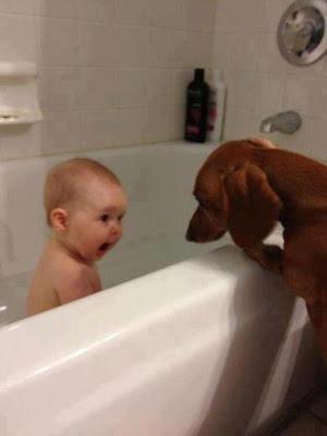 Es mi bañera!!!