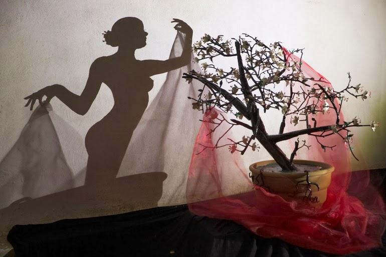 Talentoso artista crea arte por fundición de sombras
