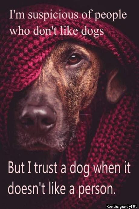http://4.bp.blogspot.com/-Z1cvhF5qL9Q/Utyvlu4jMJI/AAAAAAAAC-U/WFXPZzOCoaQ/s1600/Suspicious+And+Trust.jpg