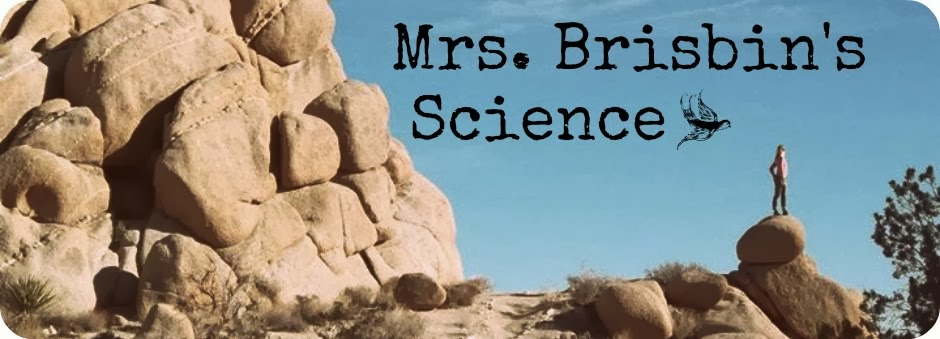 Mrs. Brisbin's Science