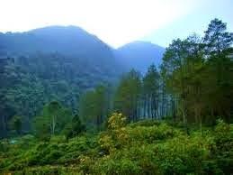Wisata ke Gunung Puntang Bandung yang Menakjubkan