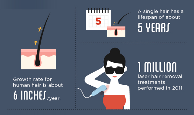 Hair Removal Facts, Numbers and Figures