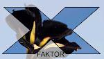 X-faktor 2013 Sort\Grønn blomsterutgaven  hos Moseplassen