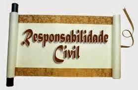 responsabilidade civil video aula resumo pdf questoes