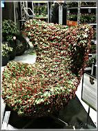 stol övertäckt med kaktus