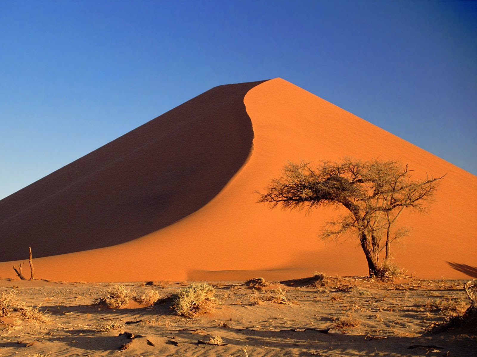 World beautifull places sand dunes of the sahara africa for New nice images