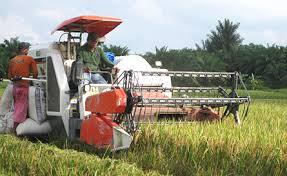 Teknologi Pertanian Di Indonesia
