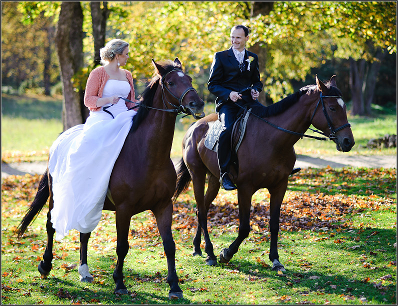 vestuvės rudenį su žirgais