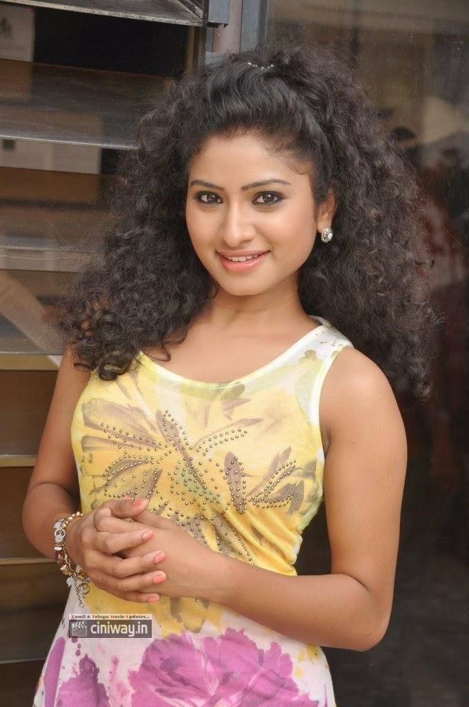 Vishnu-Priya-Stills-at-Nenu-Naa-Friends-Pre-Release-Press-Meet