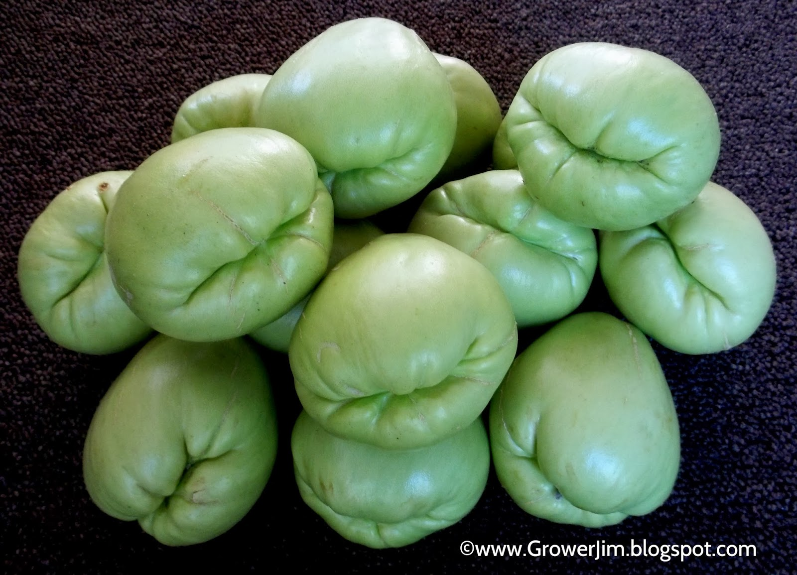 health benefits of chayote This is a vegetable that is widely consumed by all the people in indonesia, and is actually known as a siamese pumpkin for the rest of the world.