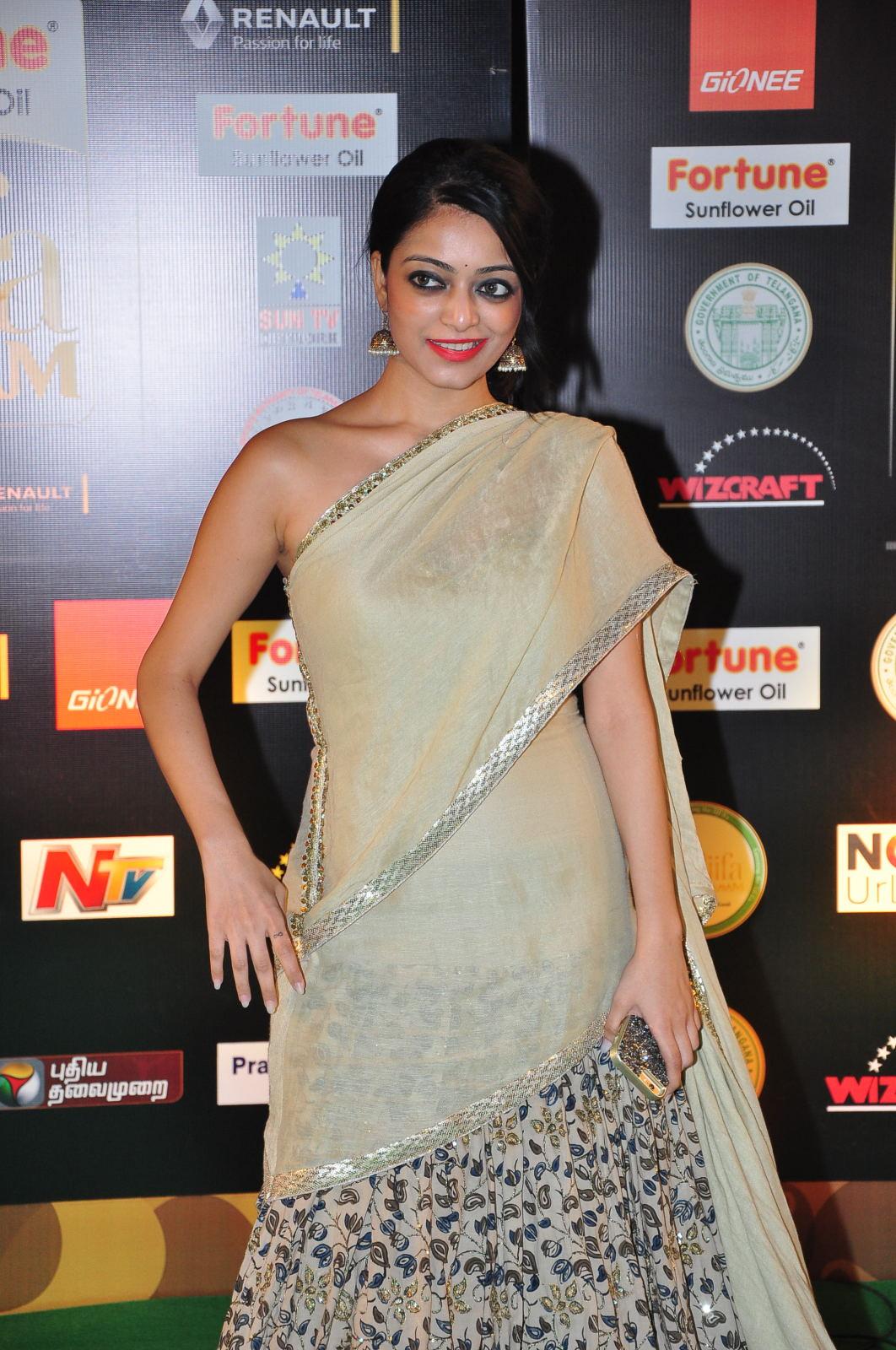 janani iyer glamorous in saree-HQ-Photo-15