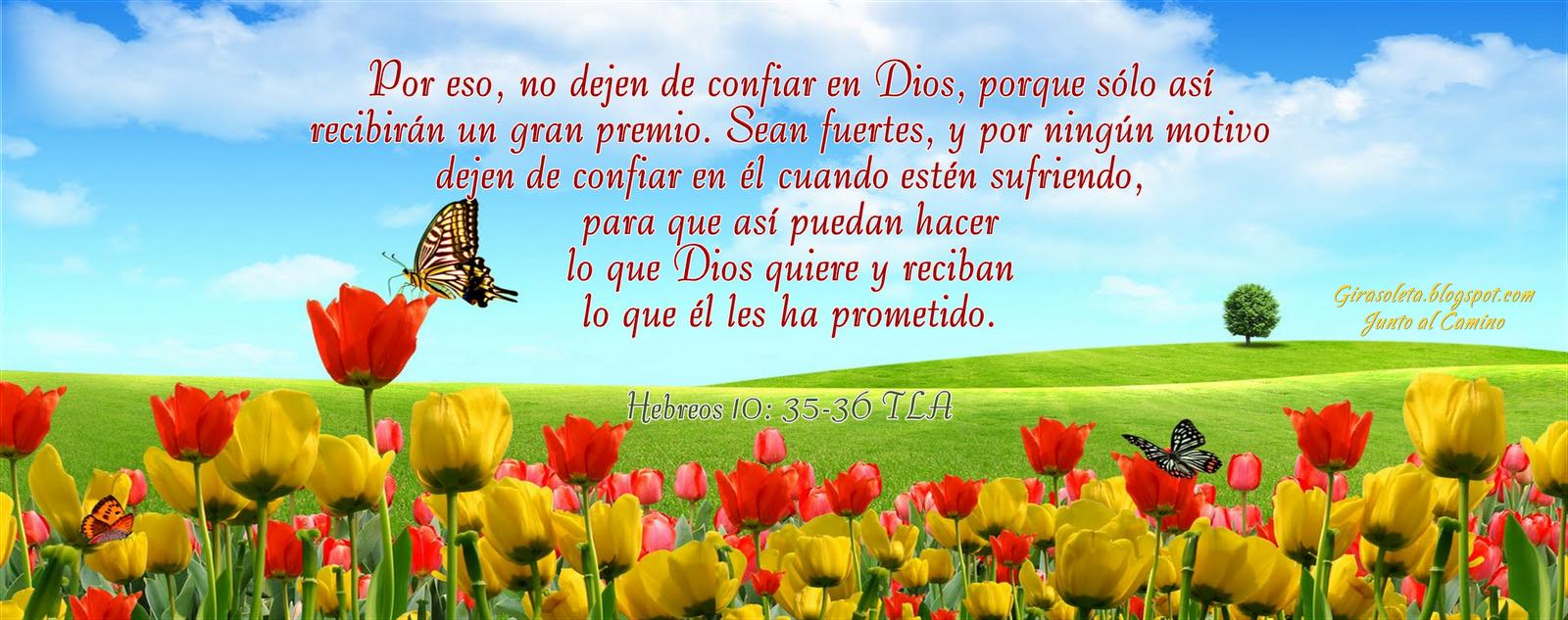 Imagenes Cristianas Reflexiones Amor Dios Mensajes Cristianos
