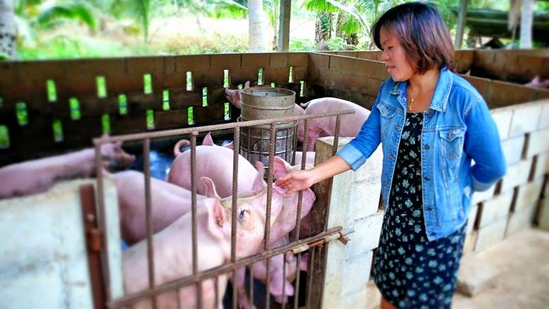 Fon, die Schweinezüchterin aus Ban Krut