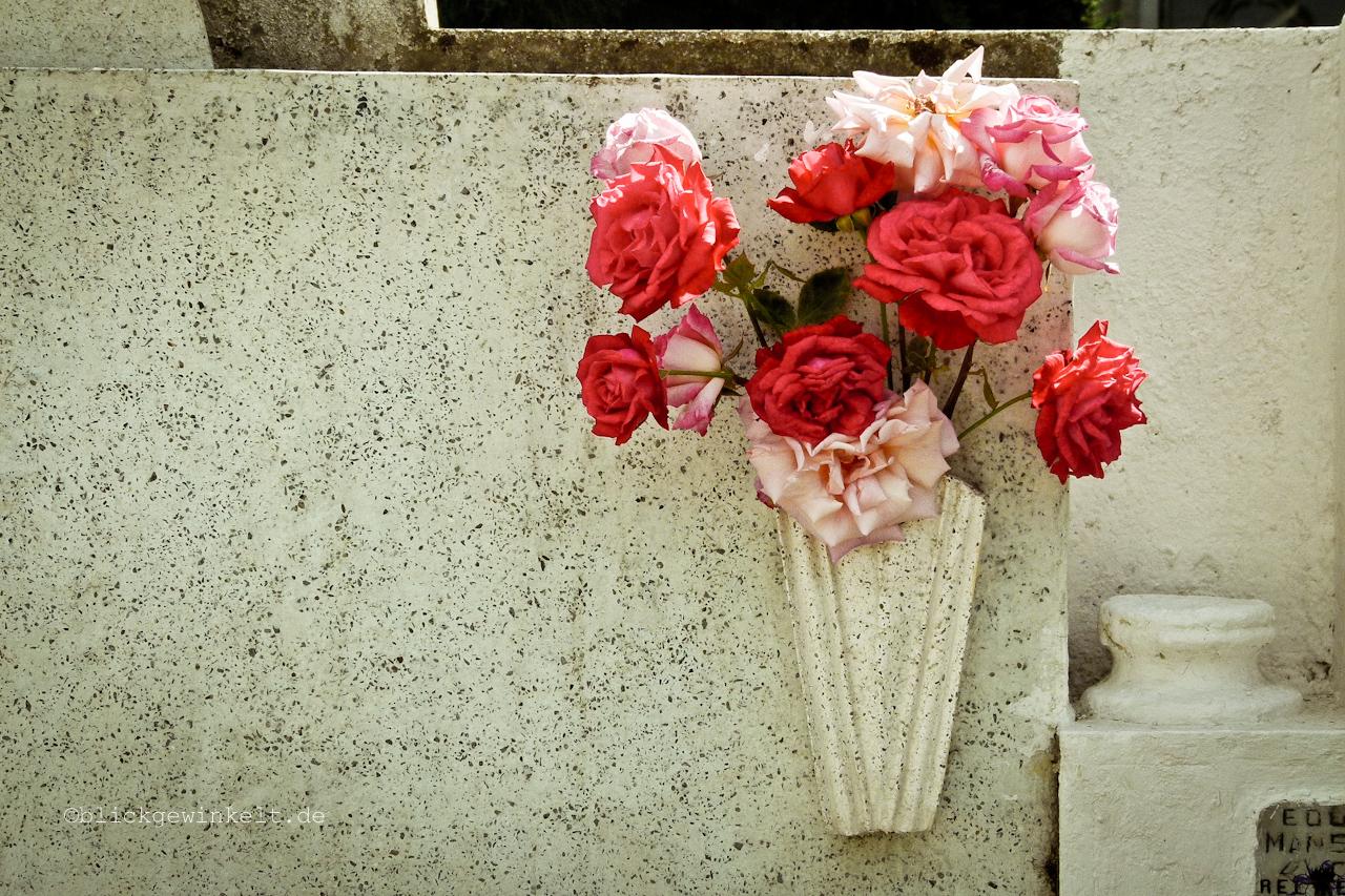 Friedhofsblumen Punta Arenas