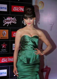 Bollywood Celebrities Pictures at GIMA Awards Red Carpet ~ Celebs Next