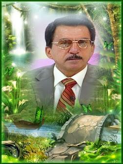 الاستاذ الدكتور خليل حسن الزركاني