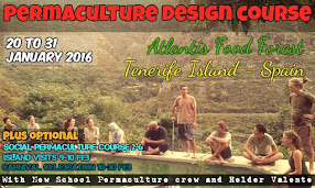 Carnival Permaculture Course