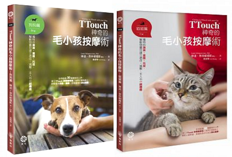 TTouch中文書已上巿!
