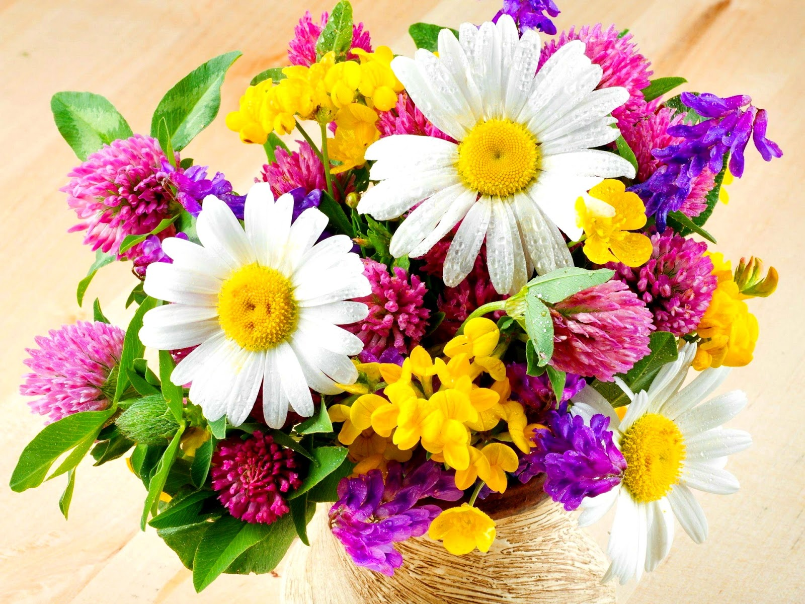 Beautiful Fresh Flowers Flowers Wallpapers