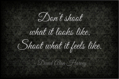 David Alan Harvey Quote: Shoot what it feels like... Via www.seeyoubehindthelens.com Dakota Visions Photography LLC