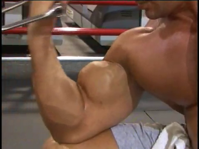 Basic Muscle Building Facts Covered