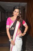 Shaddha das glamorous photos in saree-thumbnail-8