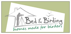 Bed and Birding