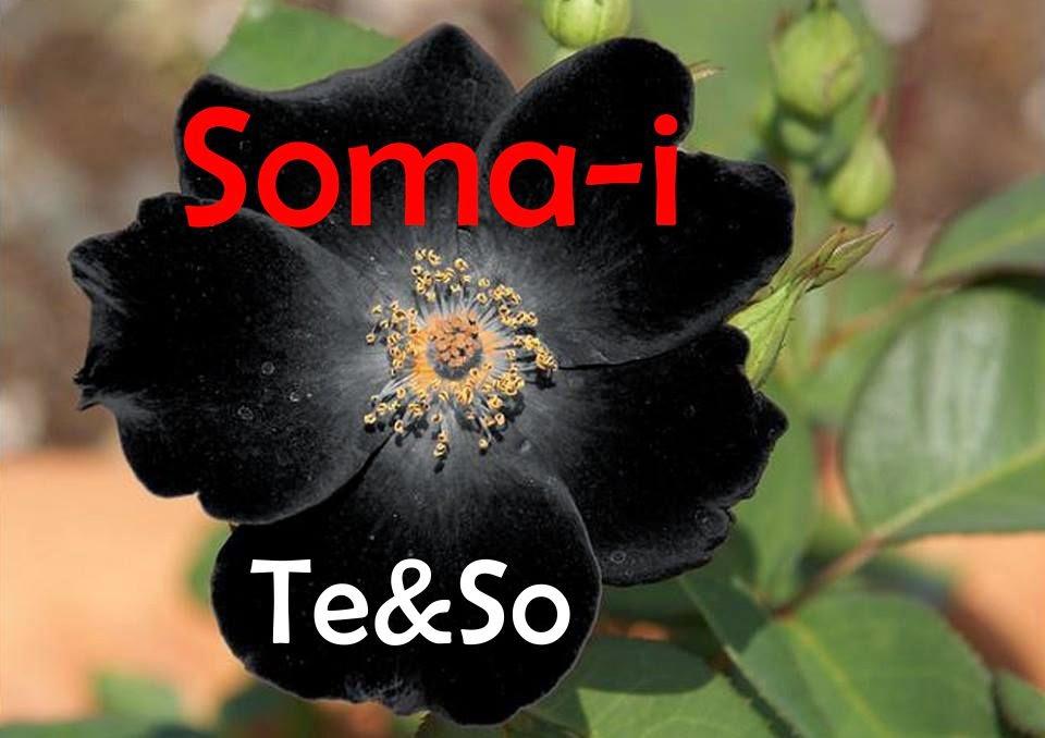 Soma-i