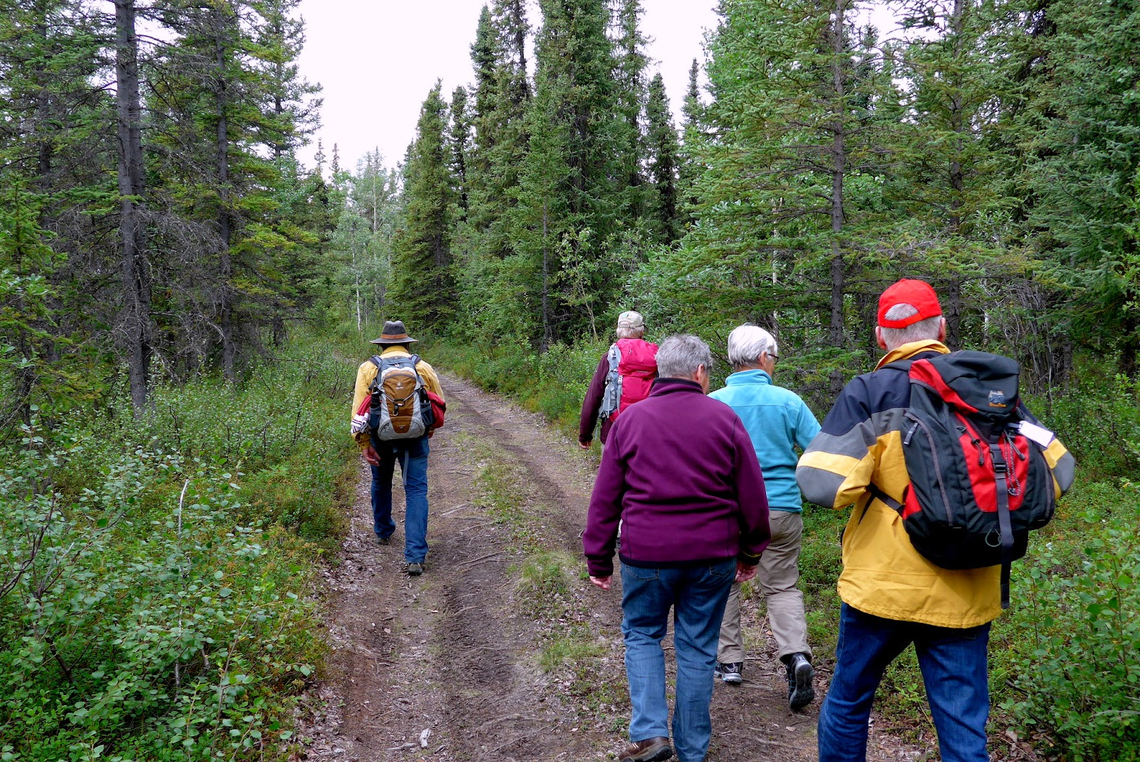 We are off on our hike in Wrangell - St. Elias National Park Preserve