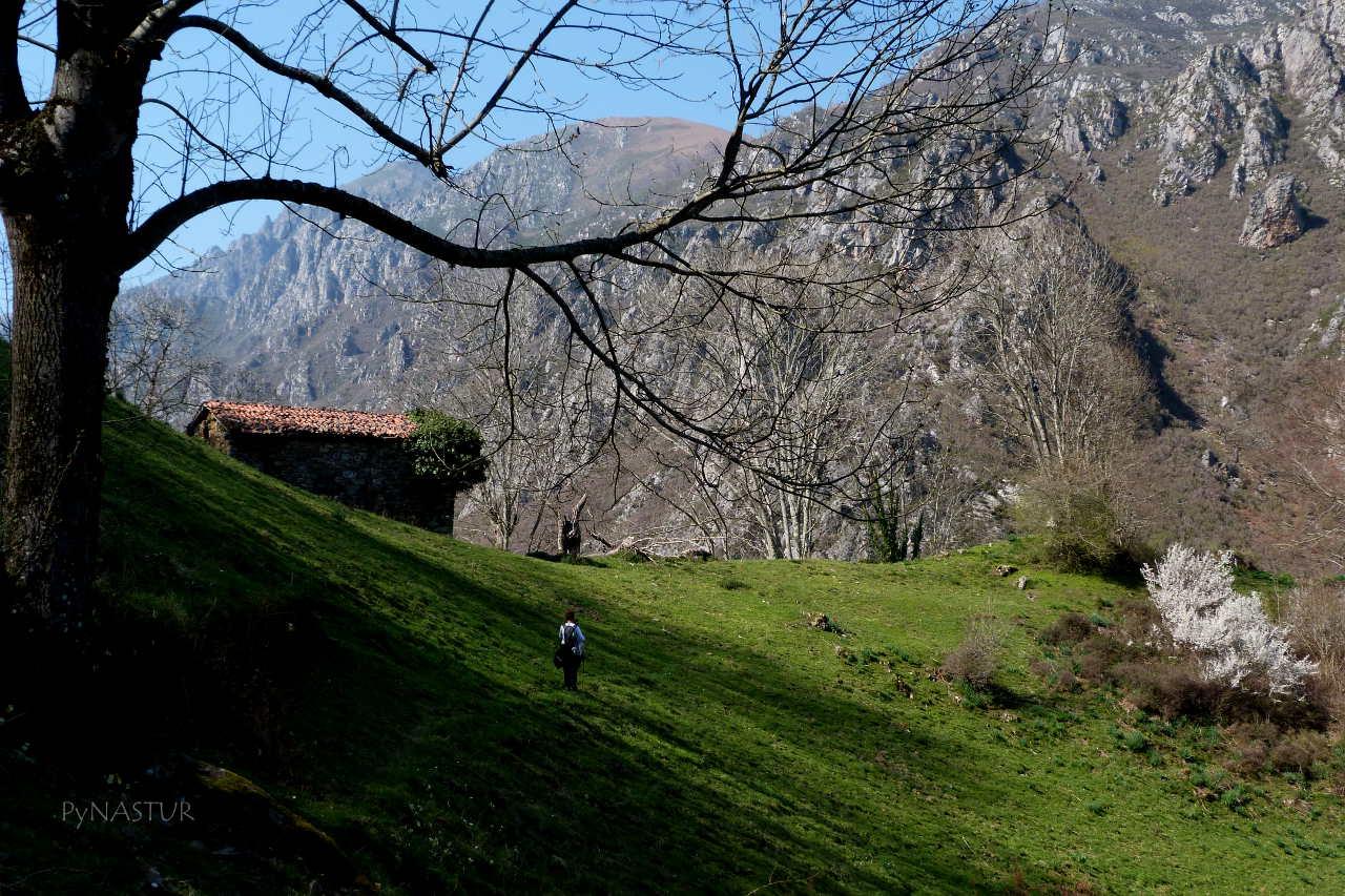 Collado Semeldón - Parque Natural de Ponga