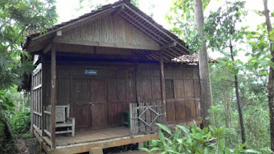 Penginapan Cottage yang ada di Kalibiru Kulonprogo