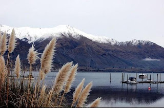 Newzealand photos, Pictures, Wallpapers, Images, Pics