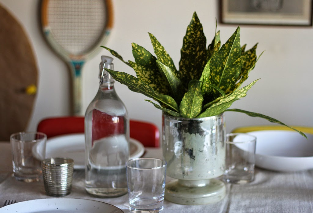 Table Setting with Plant