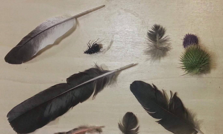 massive voodoo tutorial using feathers in miniatures by matt dipietro. Black Bedroom Furniture Sets. Home Design Ideas