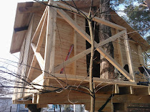 Robimy też domki na drzewach: