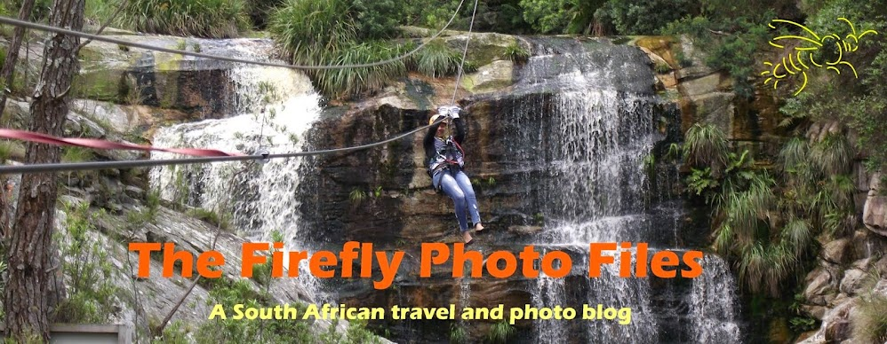The Firefly Photo Files