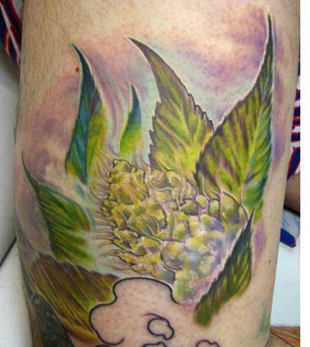 Marijuana Tattoo - As Melhores Tatuagens de Cannabis ~ LegalizePR