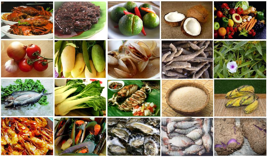 Filipino food aficionado philippine cuisine common ingredients philippine cuisine common ingredients forumfinder