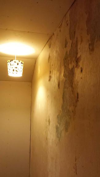 Before Plaster