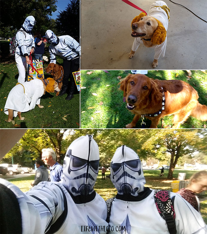Star Wars Pet Costumes
