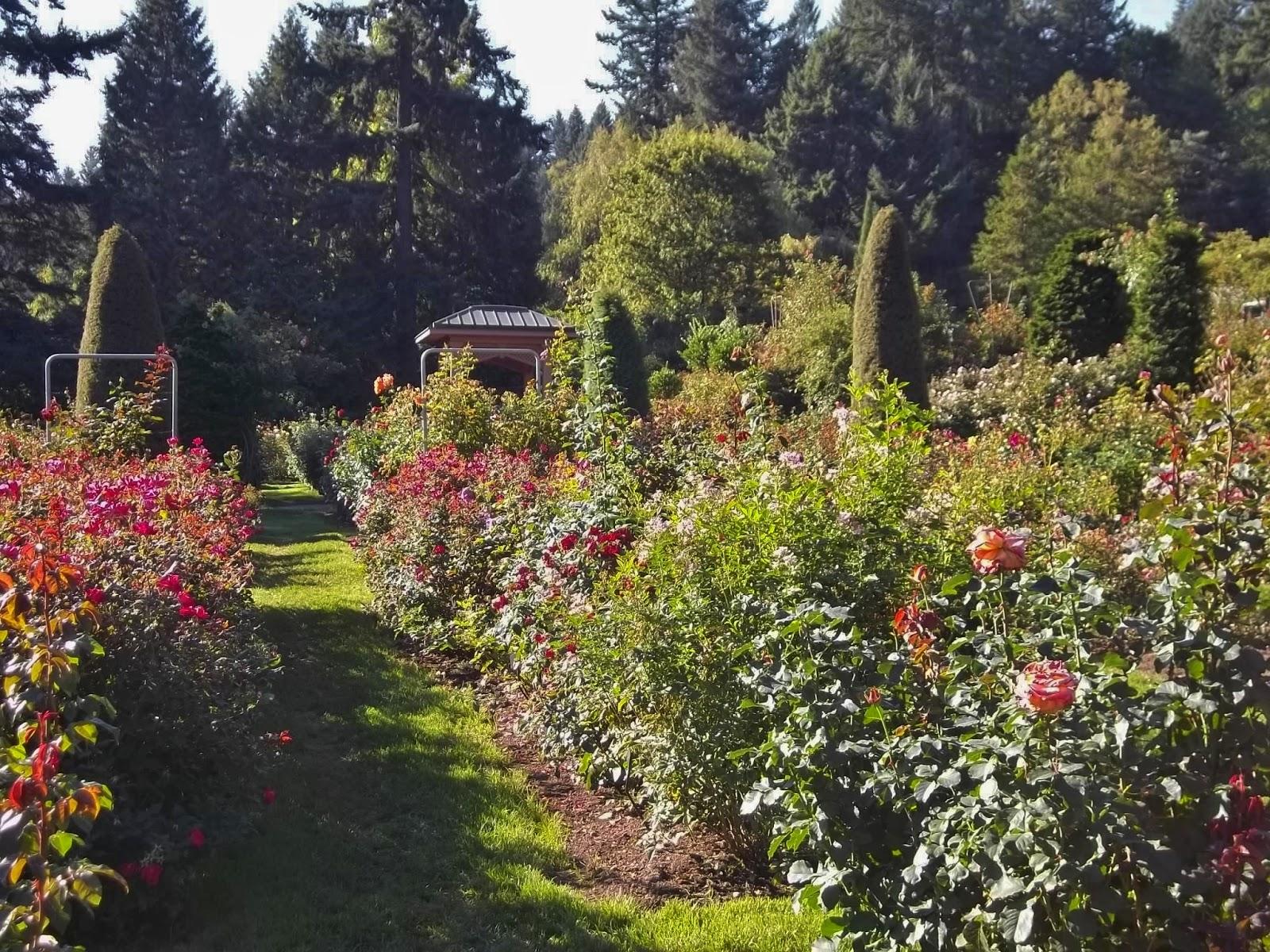 Seattle Urban Landscape October 2017