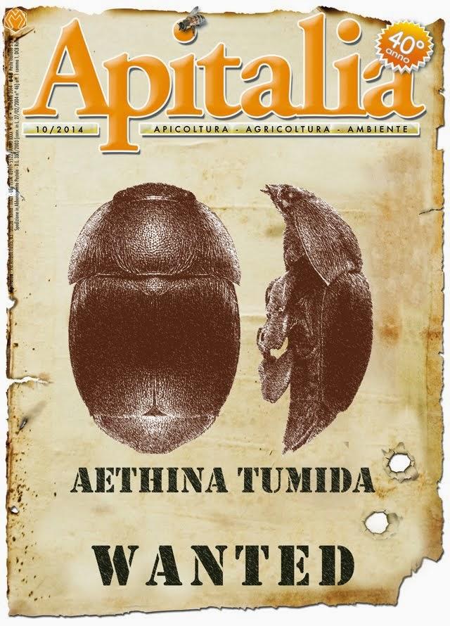 APITALIA
