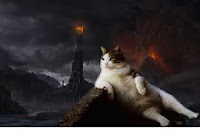 Cerita Seekor Kucing Yang Malang