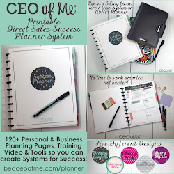 Direct Sales Success Planner!